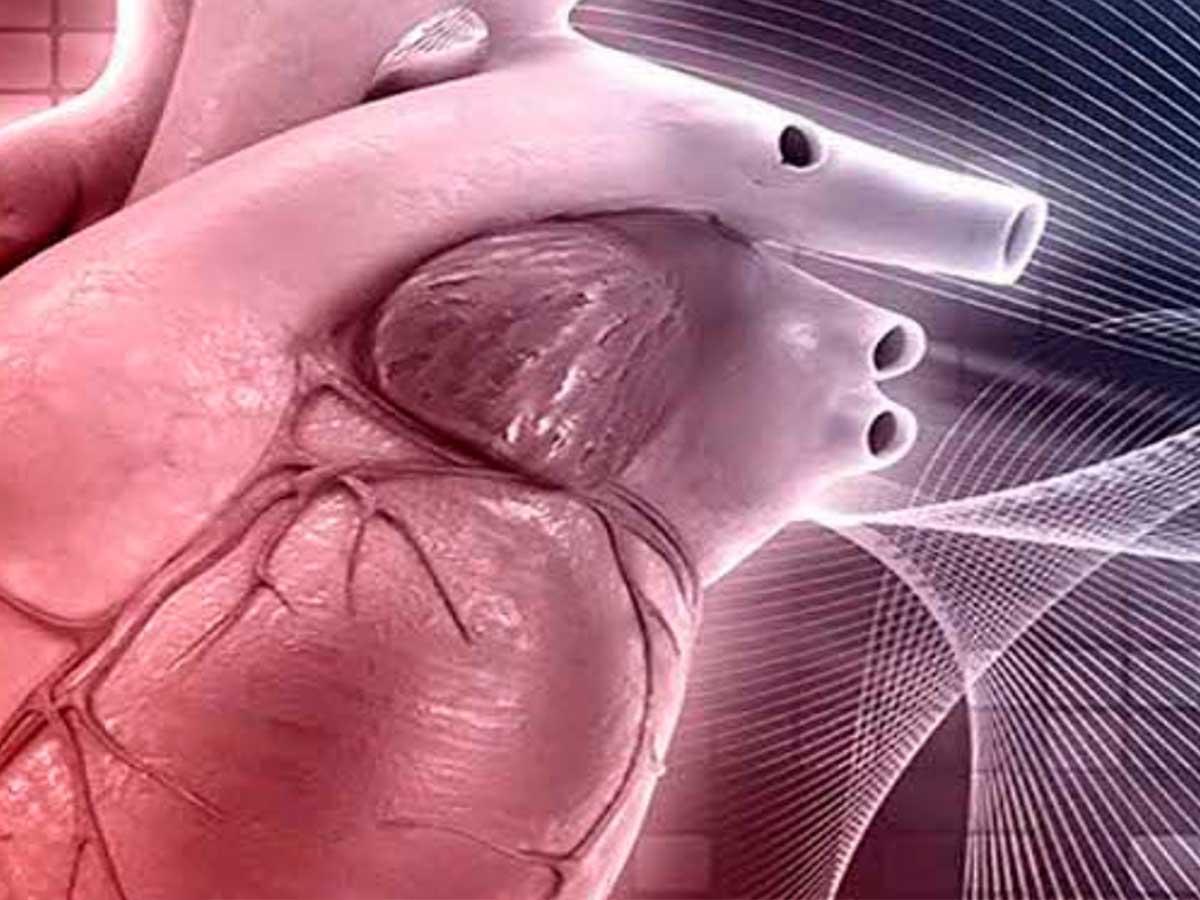 Genechron: servizi di genetica - patologie cardiovascolari
